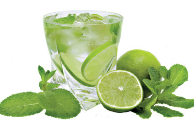ORIGIN OF THE MOJITO